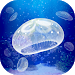 Jellyfish Pet