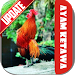 Download Ayam Ketawa 1.1 APK