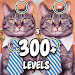 Download Find the difference 300 level Spot the differences 3.61 APK