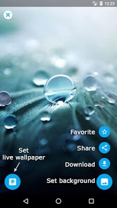 screenshot of Dandelion Live Wallpaper version Varies with device