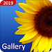 Gallery 2019