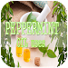Download Peppermint Oil Uses 8.0 APK