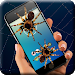 Download Spider on screen 4.0 APK